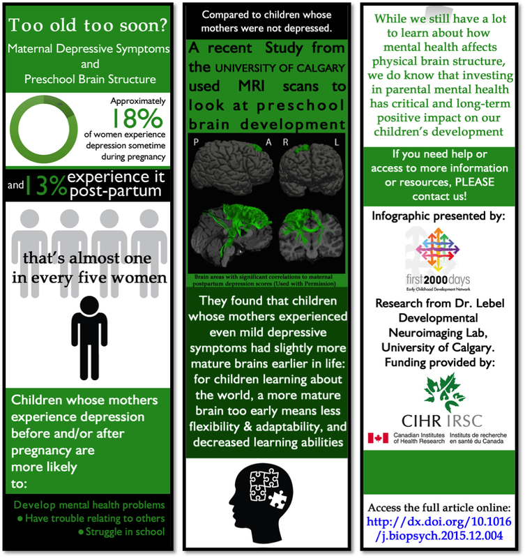 Depression and Brain Structure Infographic
